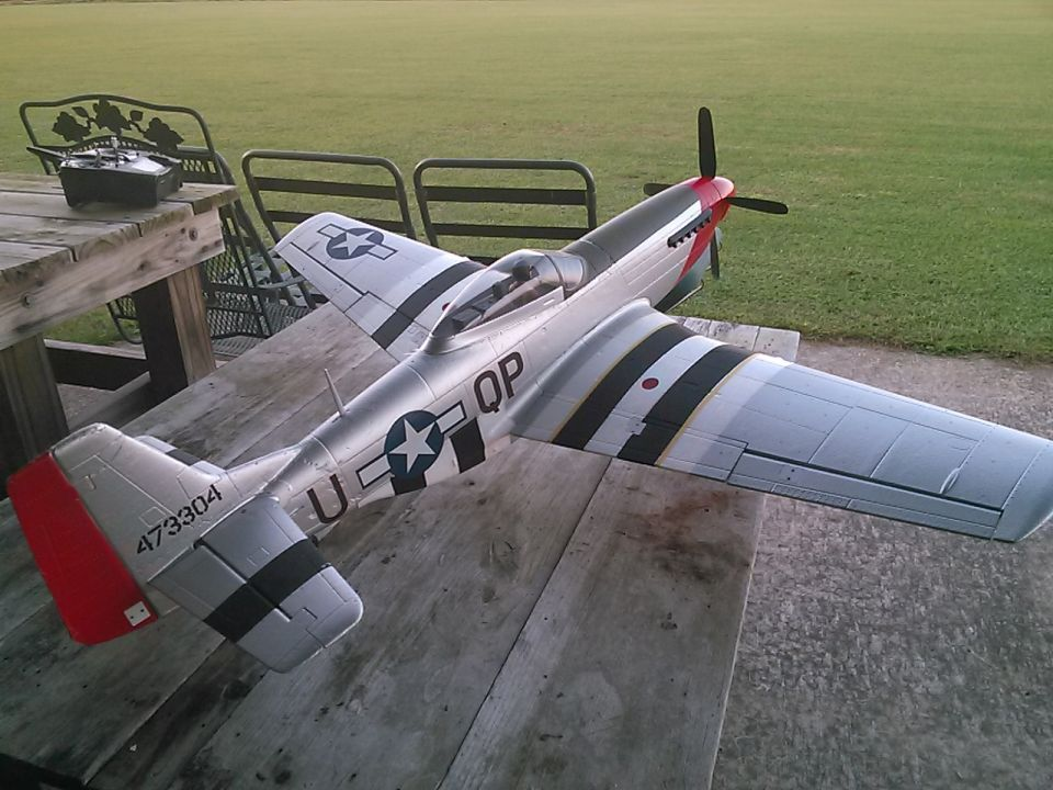 Bob got a lot of flights in with Jeff's old P51. The field was perfect for the little retracts. Last night after dark, the skunks came in and destroyed the field again. It looks like it was plowed!